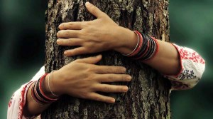 embracing-tree