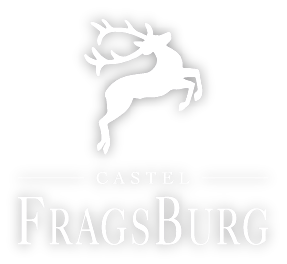 fragsburg-logo-weiss[1]